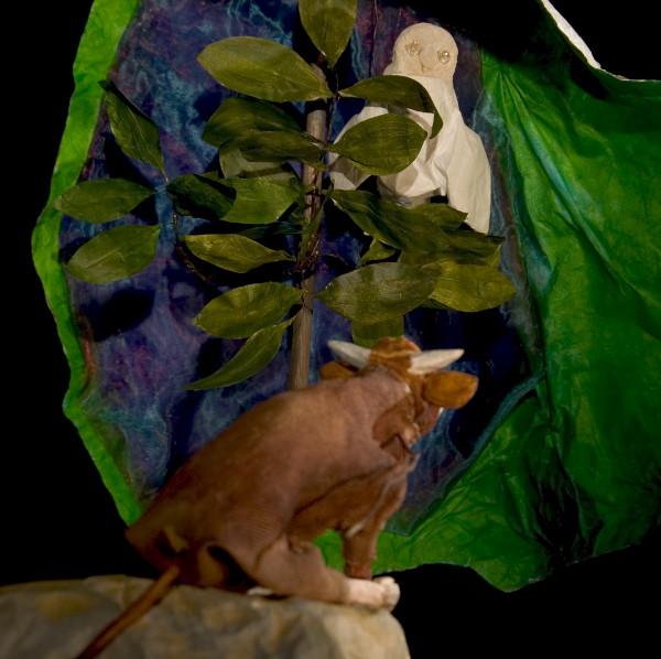 Der Stier Paolo begegnet der Eule im Wald.